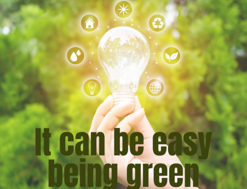 It can be easy being green – 5 tips for a more energy-efficient business